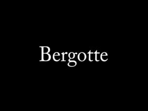 Bergotte-imageàlaune